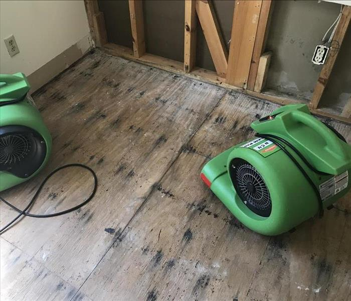 Water Damage Water Restoration Essentials: The Air Mover