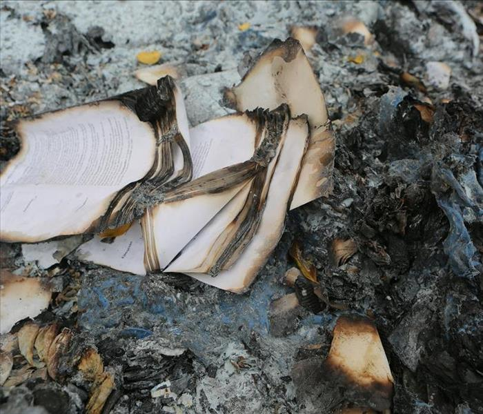 Burnt book pages in a pile of ash