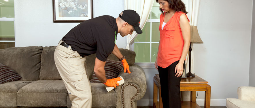 Conover, NC carpet upholstery cleaning
